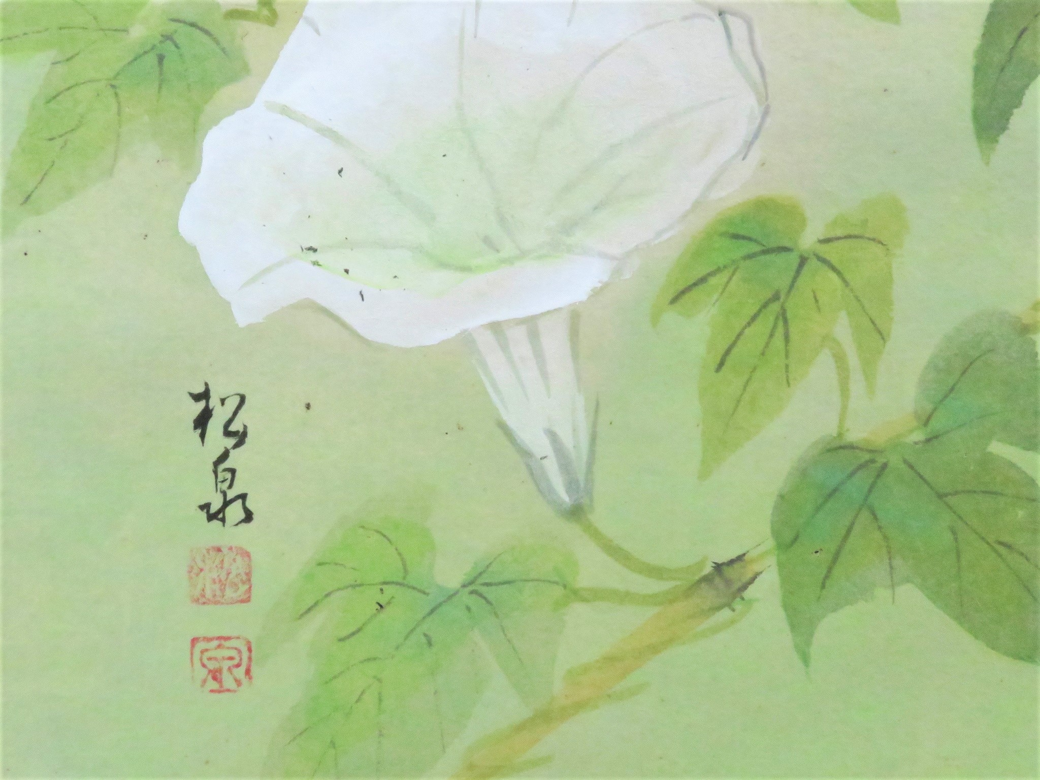 田中松泉4